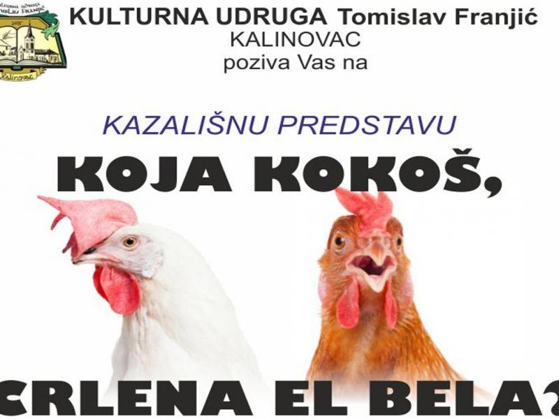 Poziv na kazališnu predstavu i promociju knjige Sunčice Orešić
